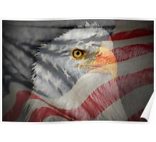 Patriot-Bald Eagle And American Flag Poster