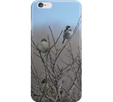 Sparrows at Home iPhone Case/Skin