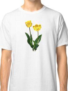 Backlit Yellow Tulips Classic T-Shirt
