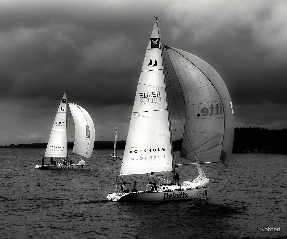 On a Following Wind by Kofoed