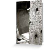 Secret Agent Spider Greeting Card