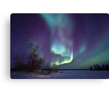 Aurora Borealis over Gordon Lake Canvas Print