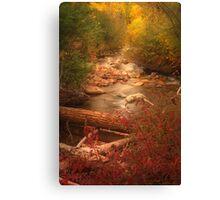 Brush Ck. vert Canvas Print