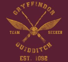 Abercrombie & Quidditch Harry Potter Shirt