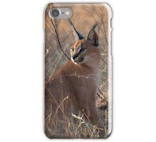 Caracal 3 iPhone Case/Skin