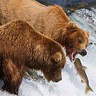 Gotcha! Eatcha! Never Letcha Go! by Michael S Nolan