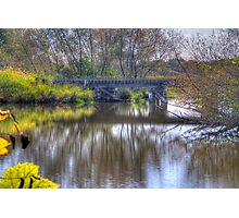 Country Trestle Photographic Print