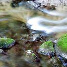 river blur by Leeanne Middleton