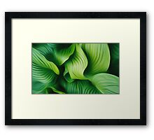 Leafs abstract Framed Print