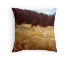 Deserted - Tijeras, New Mexico Throw Pillow