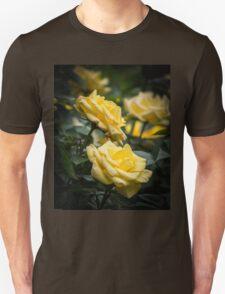 Beautiful yellow rose portrait Unisex T-Shirt