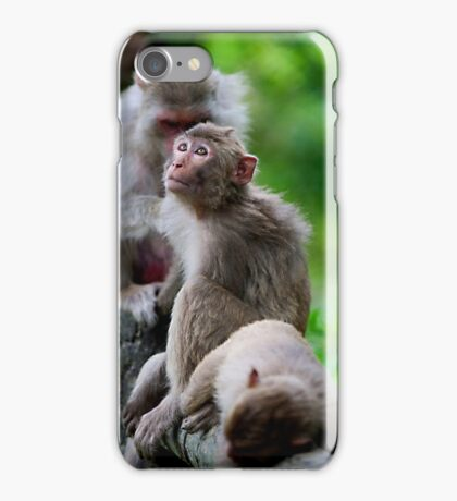Macaque Monkey iPhone Case/Skin