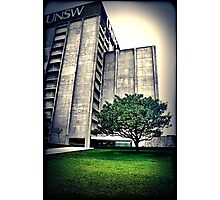 Library. UNSW Photographic Print