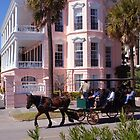 Charming Charleston, South Carolina by Susanne Van Hulst