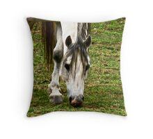 The Not-so-Wild Stallion Throw Pillow