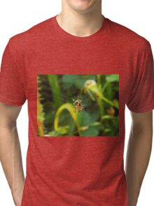 Orb Weaver Tri-blend T-Shirt