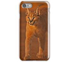 Caracal 1 iPhone Case/Skin