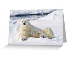 Curious polar bear Greeting Card