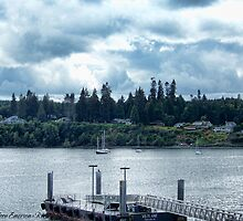Leaving Kingston in the Dim Daylight by rocamiadesign