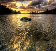 One Rock by Bob Larson