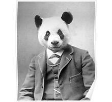 Distinguished Panda Poster