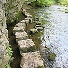 Stepping Stones by John Keates