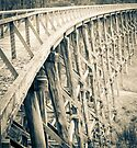 Trestle Bridge Noojee  by Callum Brown