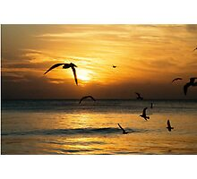 Siesta Key  Photographic Print