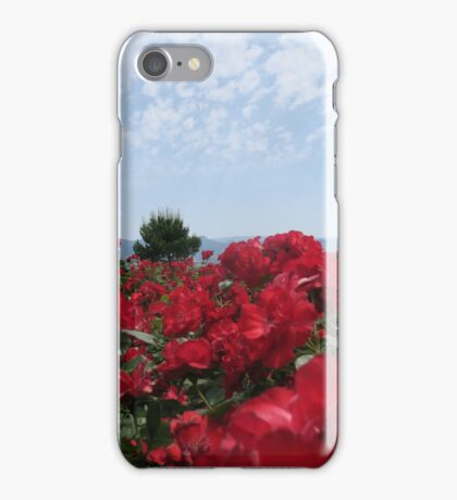 Colorful Vineyard iPhone Case/Skin