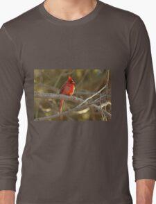 Northern Cardinal Songbird  - Cardinalis cardinalis  #2 Long Sleeve T-Shirt