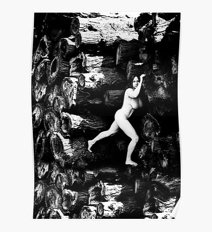 Art nude Poster