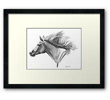 Wind in His Mane Framed Print