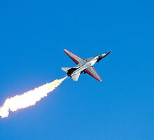Dump and burn, F-111, Williamtown Air Show 18 Sep 2010 by DespinaT