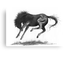 Horse and Dust Canvas Print