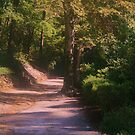 Red Dirt Road by Chelei