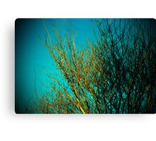 branches all ordinary and special Canvas Print