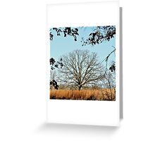 Bearing the Weight of Sky and Clouds.... Greeting Card