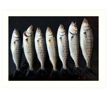 not sardines Art Print