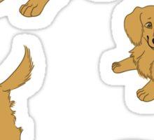 Golden Retriever Puppy Pattern - Pink Sticker