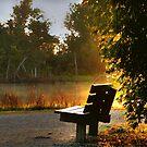 Early Morning by Savannah Gibbs