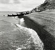 The pebble coastline at Sheringham, Norfolk, UK by Richard Flint