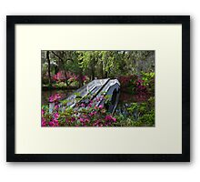 Bridge in Magnolia Plantations Garden Framed Print