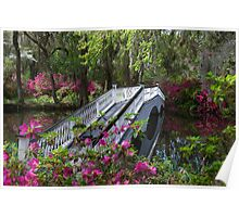 Bridge in Magnolia Plantations Garden Poster