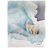 Life In The Arctic Circle Poster
