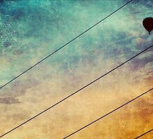 Birds On A Wire #3 by Paul Evans
