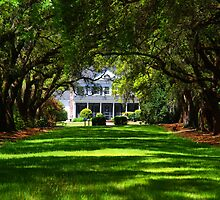 Legare Waring House, Charleston by Susanne Van Hulst