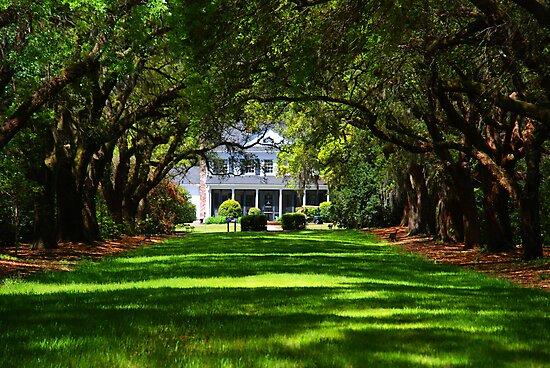 Legare Waring House, Charleston by Susanne Van Hulst