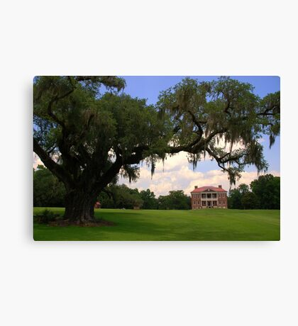 Drayton Hall Plantation, Charleston Canvas Print