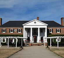 Boone Hall Plantation, Charleston by Susanne Van Hulst