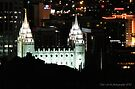 Over Looking Salt Lake Temple at Night by Jan  Tribe